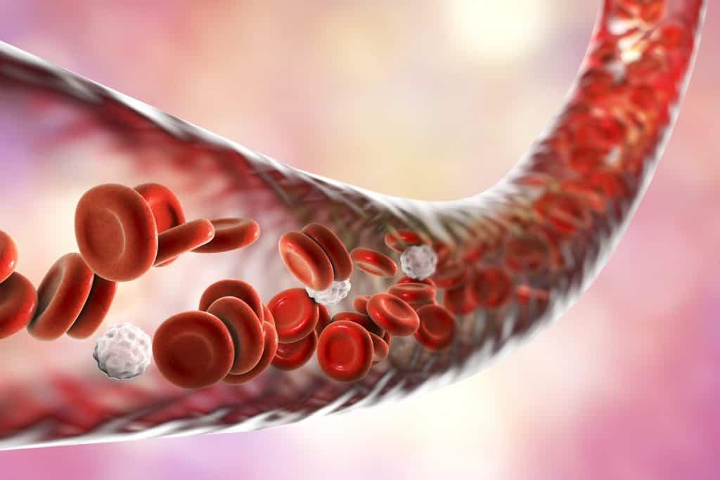 Kako očistiti krvne žile