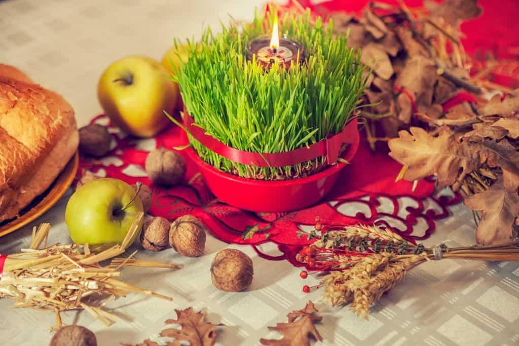 Kako posijati Božićnu pšenicu