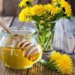 Med od maslačka – pripravak za kašalj i prehladu