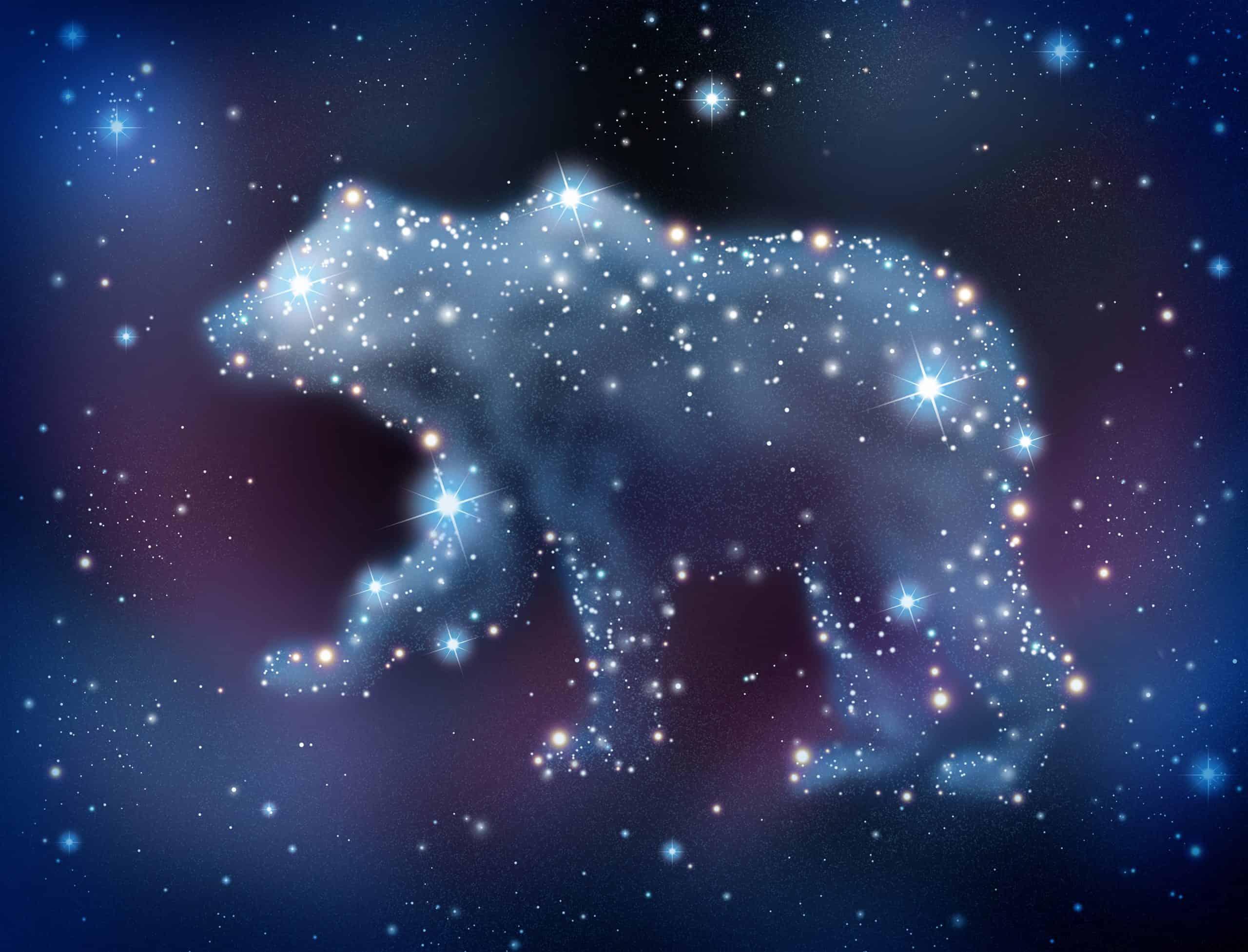 Sanjarica medvjed