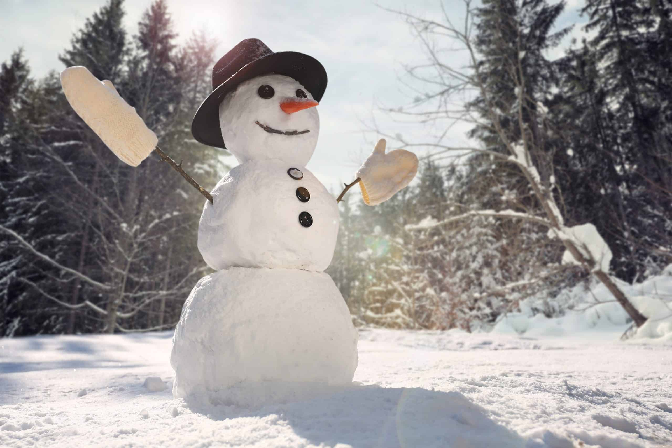 sanjarica snijeg